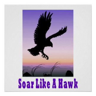 Soar like a Hawk Poster. Poster