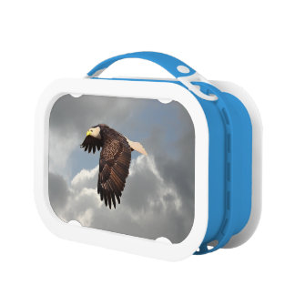 SOARING EAGLE LUNCH BOX