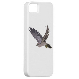Soaring Falcon with Outstretched Wings iPhone 5 Cases