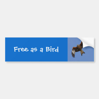 Soaring Red Kite Bumper Sticker