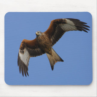 Soaring Red Kite Mouse Mat