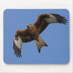 Soaring Red Kite Mouse Pad