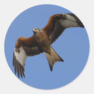 Soaring Red Kite Round Sticker