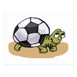Soccer Ball Turtle Post Cards