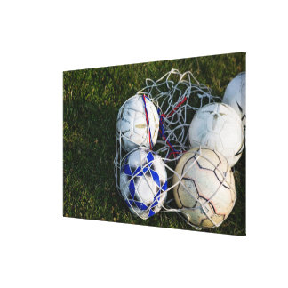 Soccer balls in net canvas prints