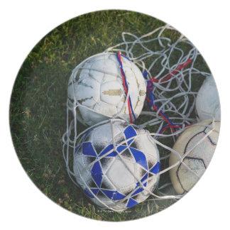 Soccer balls in net plate