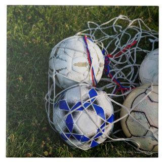 Soccer balls in net tile