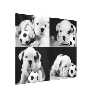 """Soccer Puppies"" English Bulldog Collage Canvas Print"