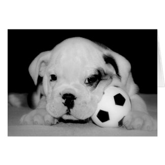 Soccer Puppy English Bulldog Greeting Card