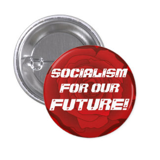 Socialism for our Future Button