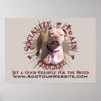 Socialize Train Educate Pitbull Posters