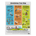 Socializing Your Dog Posters