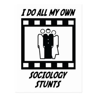 Sociology Stunts Postcard