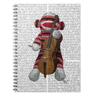 Sock Monkey and Cello Spiral Notebook