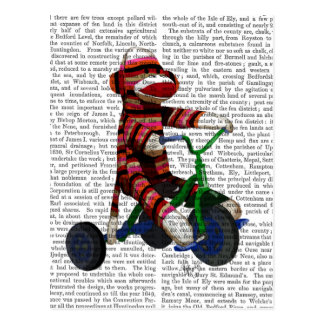 Sock Monkey on Tricycle Postcard