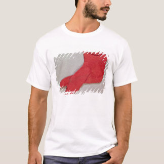 Sock, one of a pair from Egypt, Egypto-Roman perio T-Shirt