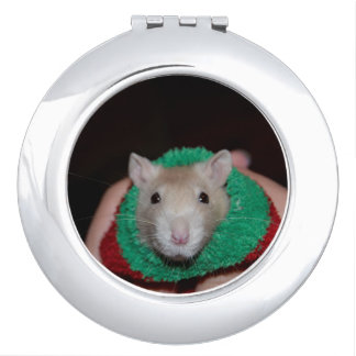 Sock Rat Vanity Mirror