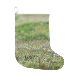 Sock with gift Bleaches on grass