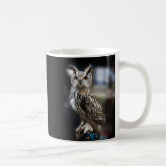 Socrates Quote Eagle Owl Basic White Mug