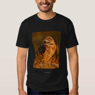 Socrates Tee Shirts