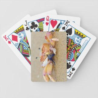 Sodwana Bay, KwaZulu Natal Province, South Bicycle Playing Cards