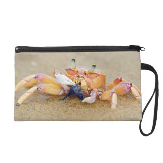 Sodwana Bay, KwaZulu Natal Province, South Wristlet Purse