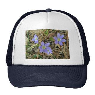 Soft Blue Hepatica Wildflower Series Cap
