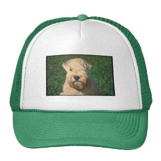 Soft Coated Wheaten Terrier Cap