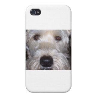 Soft Coated Wheaten Terrier Cases For iPhone 4