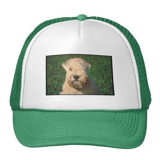 Soft Coated Wheaten Terrier Mesh Hats