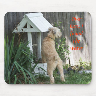 Soft Coated Wheaten Terrier on  wishing well Mouse Mat