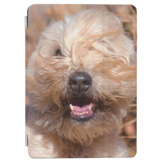 Soft Coated Wheaten Terrier portrait iPad Air Cover