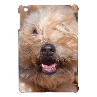 Soft Coated Wheaten Terrier portrait iPad Mini Cover