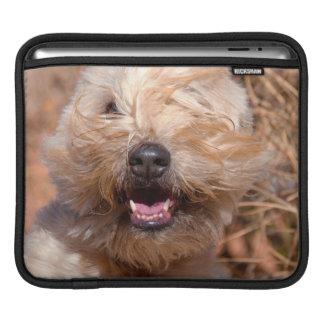 Soft Coated Wheaten Terrier portrait iPad Sleeve