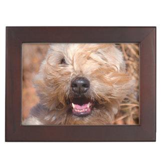 Soft Coated Wheaten Terrier portrait Keepsake Box