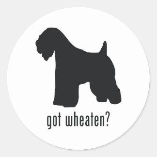 Soft-Coated Wheaten Terrier Round Sticker