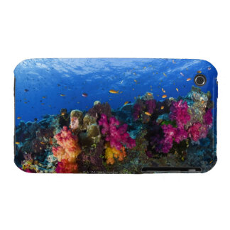 Soft corals on shallow reef, Fiji iPhone 3 Case