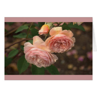 SOFT DUSKY ROSE- COLORED  ROSES NOTE CARD