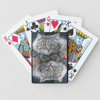 Soft Fluffy Green Eyed Cat Bicycle Playing Cards