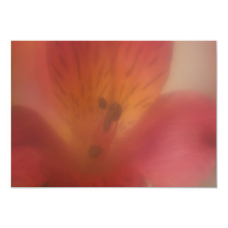Soft Focus Flower Invitation