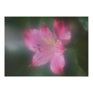 Soft Focus Lens  Flower Invitation