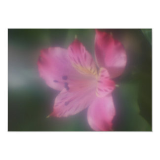Soft Focus Lens Photo of a Flower Card