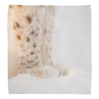 Soft golden lynx paws in snow bandana