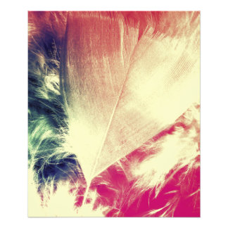 Soft Heart Photograph