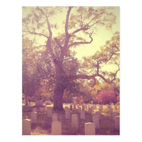 Soft Light Graveyard Postcard