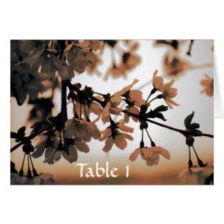 Soft Light Peach Table Cards