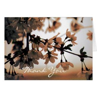 Soft Light Peach Thank You Cards (Blank Inside)