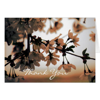 Soft Light Peach Thank You Cards (Message Inside)