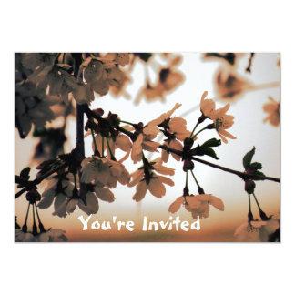 Soft Light Peach Wedding Invitations