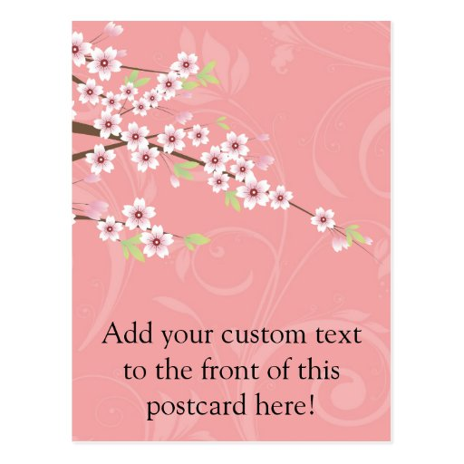 Soft Pink Cherry Blossom Post Card